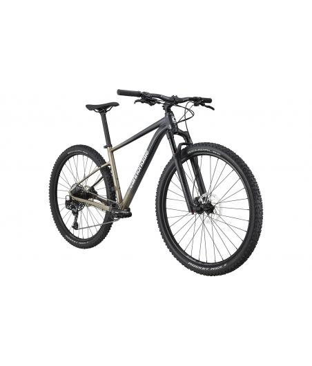 2021 Cannondale Trail SL 1...